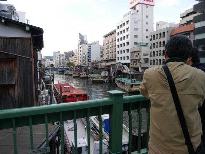柳橋付近には、屋形船が多数係留されています。