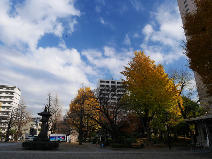 横網町公園の紅葉。