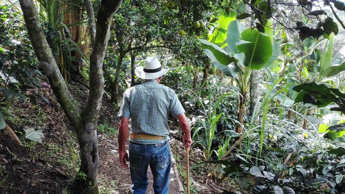 Kaffeeregion Reisen Kolumbien Kultur Landwirtschaft