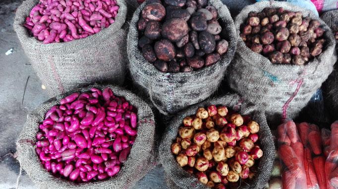 Silvia Vielfalt Kartoffeln Guambianos indigener Markt Reisen