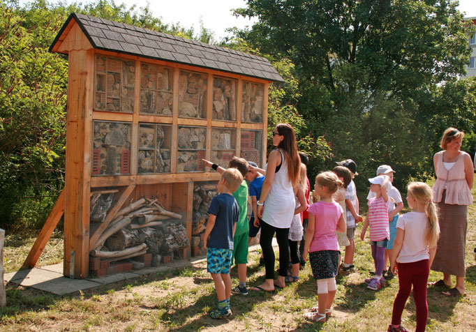 Kinder vor der fertigen Wildbienenwand Foto: H. Gille