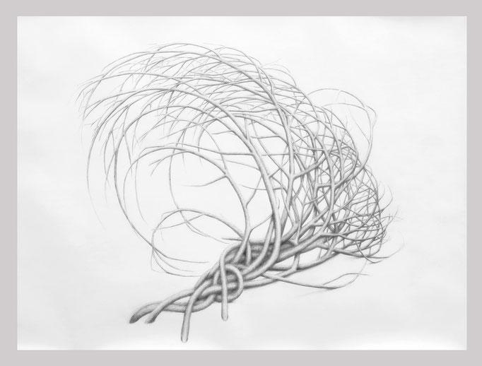 Ohne Titel, 2018. Bleistift auf Papier, 100 x 125 cm.