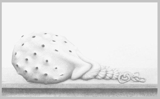 Fang, 2015. Bleistift auf Papier, 74 x 120 cm.
