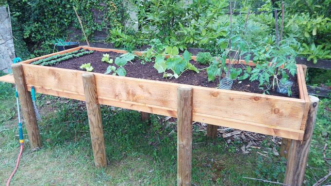 Création et réalisation d'une table de plantation