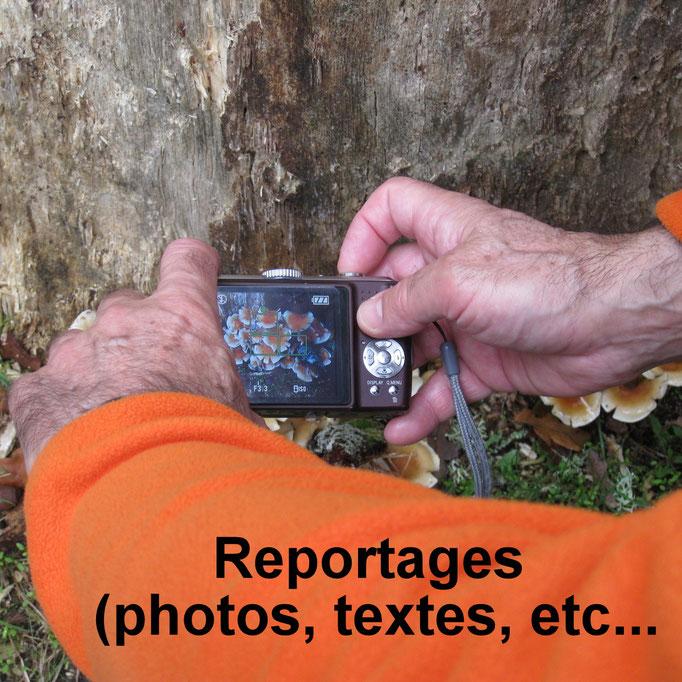 Reportages photos, textes, etc...