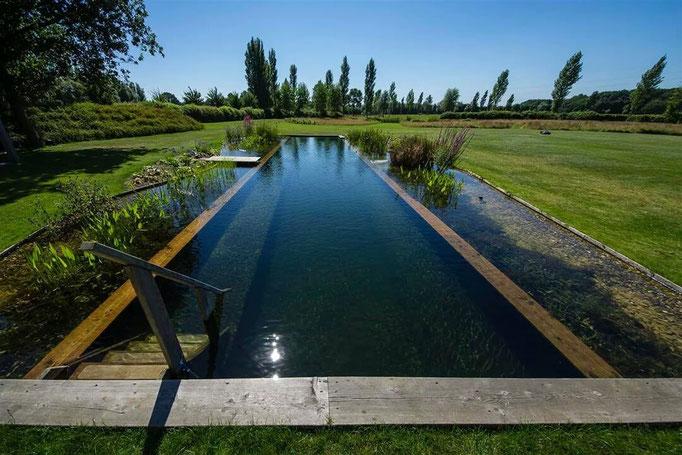 Schwimmteich erstellt von Firma Schleizer baut Gärten creativ & innovativ
