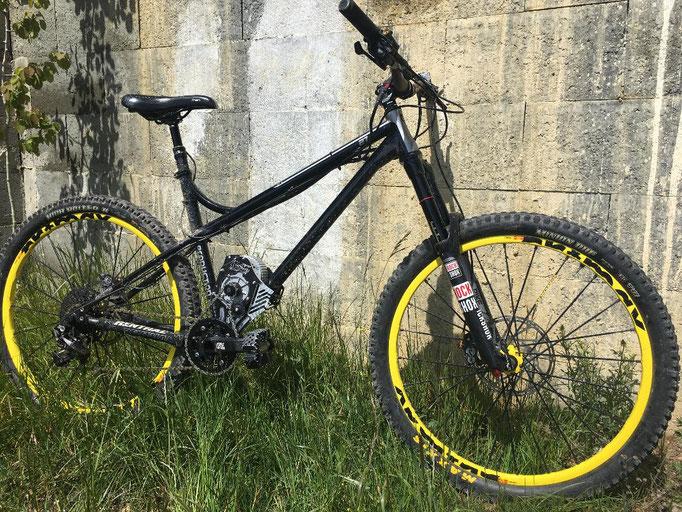 shan electric bike