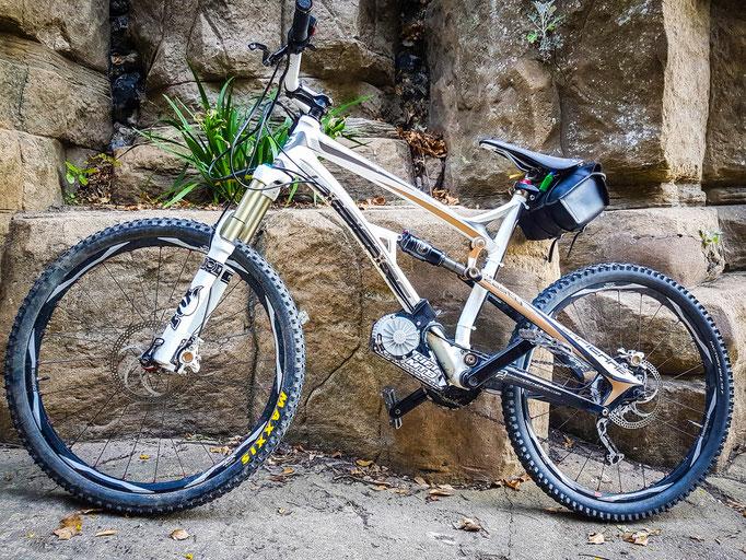custom e-bike