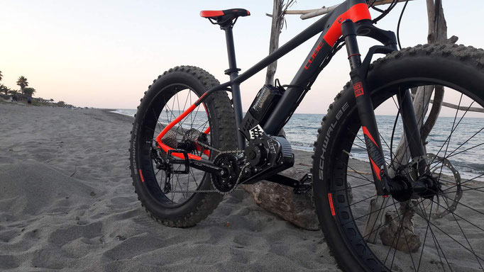 e-bike fat bike