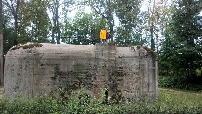 Hoch auf dem Bunker
