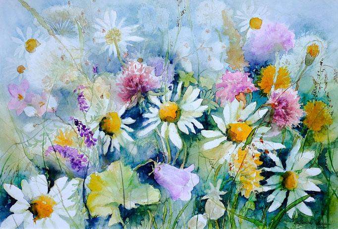 Wiesenblumen (Aquarell, 51 cm x 36 cm)
