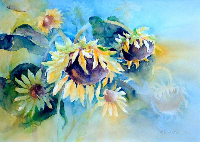 Sonnenblumen (Aquarell, 51 cm x 35 cm)