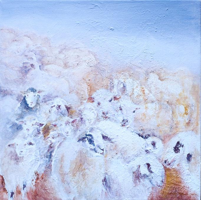 Schafe (Acryl, 52 cm x 52 cm, mit Rahmen)