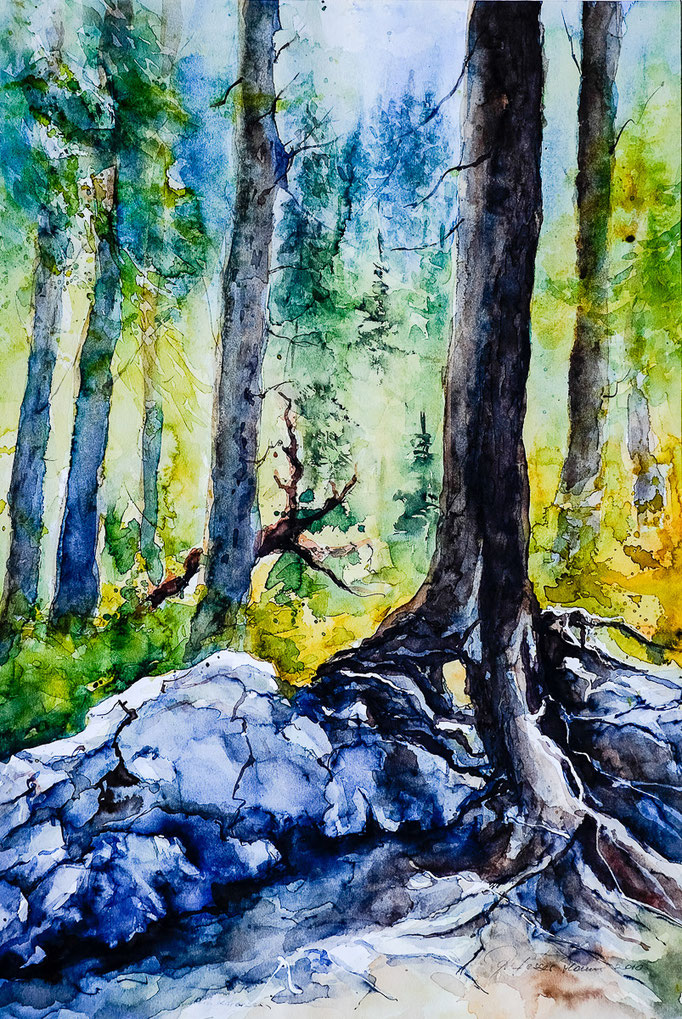 Wald am Karersee (Aquarell, 50 cm x 35 cm)