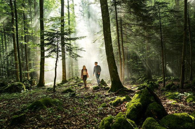 Für Outdoor-Liebhaber bieten sich zahlreiche Wälder für eine naturnahe Wanderung an ©www.slovenia.info, Ciril Jazbec