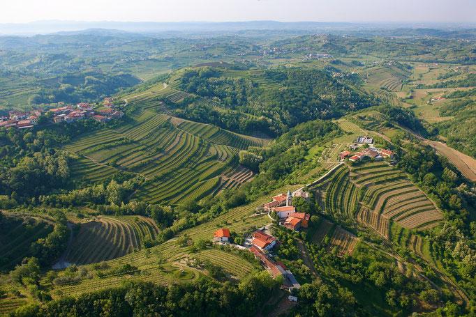 Mit einem Glas slowenischen Wein den Blick über die Goriska Brda schweifen lassen ©www.slovenia.info, ZTKMŠ Brda archive