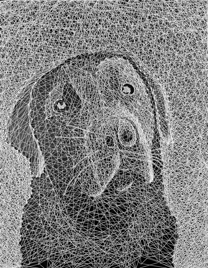 string art   -   40 x 60 cm   -   sold