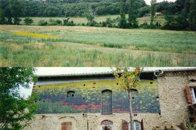 Vue latérale de l'installation (découpe dans la friche sur 200m et plantation de tournesol). Vue de la fresque photographique sur bâti (impressions laser marouflées sur façade en brique, porte et volets, 250x1200cm).