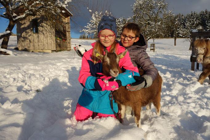 Zwillinge spielen mit Ziege im Schnee