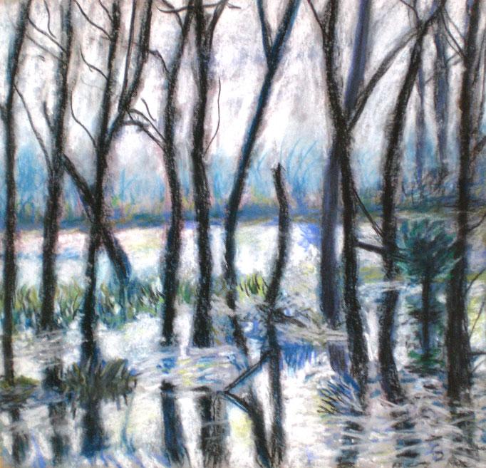 Johanna Schott // Bäume im Wasser // Pastell auf Pappe // 25,3 x 26,3 cm // 2013