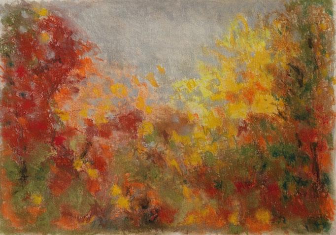 Johanna Schott // Herbstbäume // Pastell auf Papier // 29,7 x 42 cm // 2018