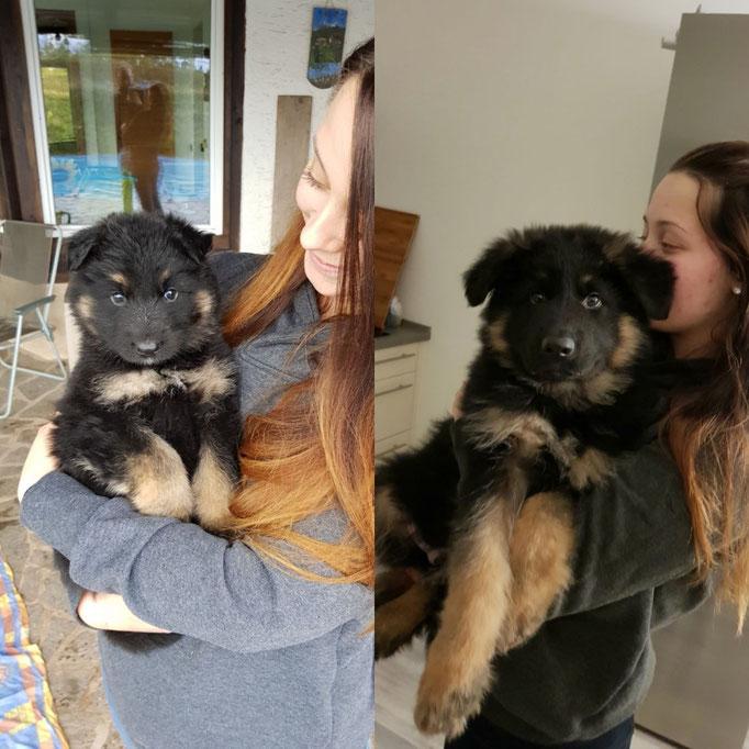4 Wochen Unterschied