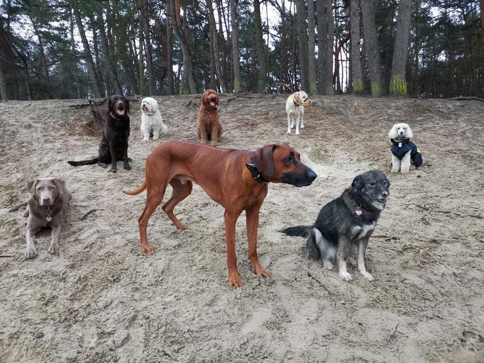 Sandkastenspiele.