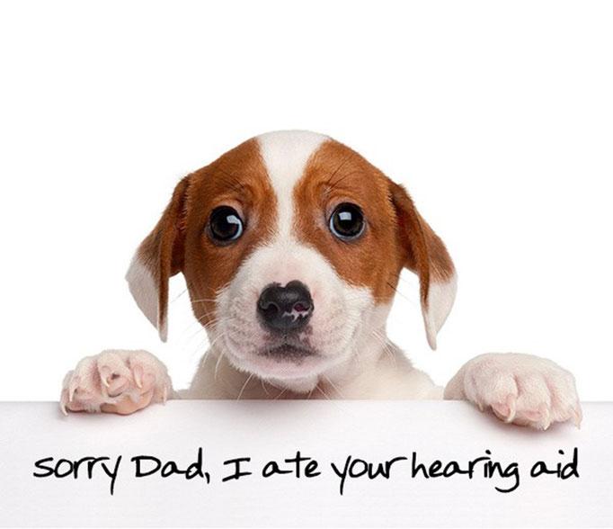 Lo siento papá, me comí tu audífono.