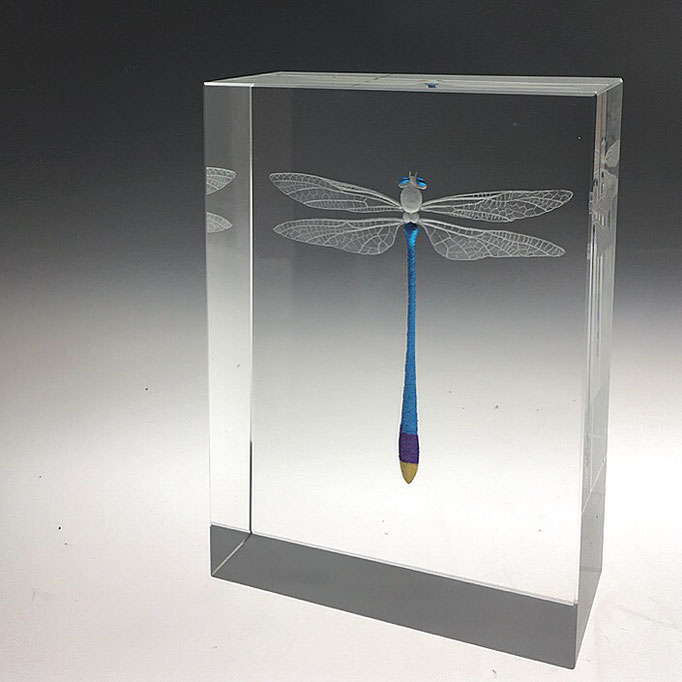 """Blue dragonfly""12x8.8x4cms optical crystal, various leaf. caa gallery"