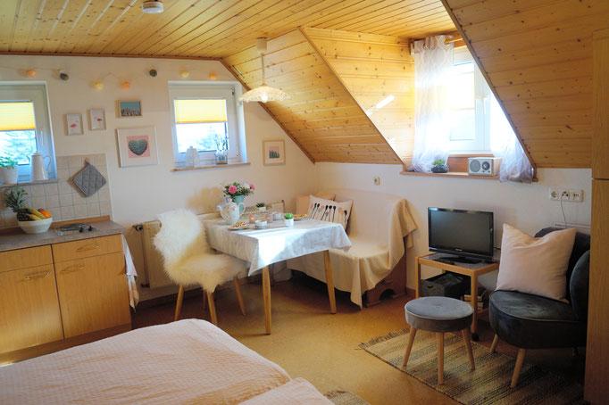 Der Spitzbub - Blick in das 1-Zimmer-Apartment unterm Dach, mit Blick in die Rhön