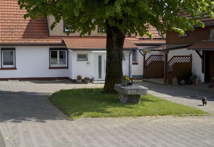 Unser Hof mit  der Linde am Wachtküppel in der Rhön
