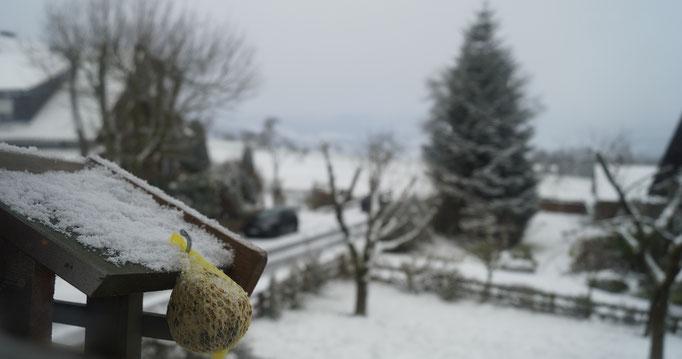 Unser Hof am Wachtküppel in der Rhön mit Blick auf den Garten
