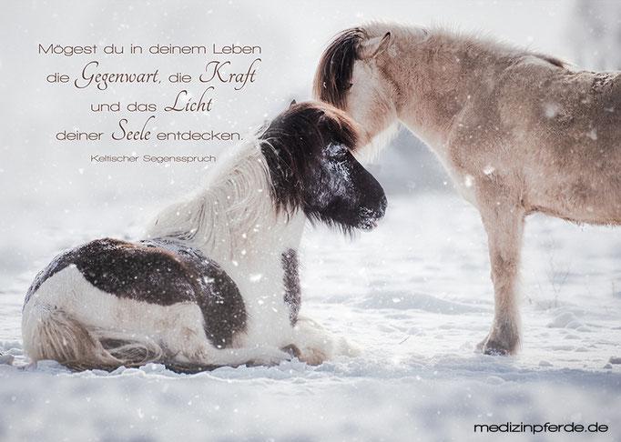 "Dezember,  Pferdekalender 2020, im Kalender ohne den Schriftzug: ""medizinpferde.de"""