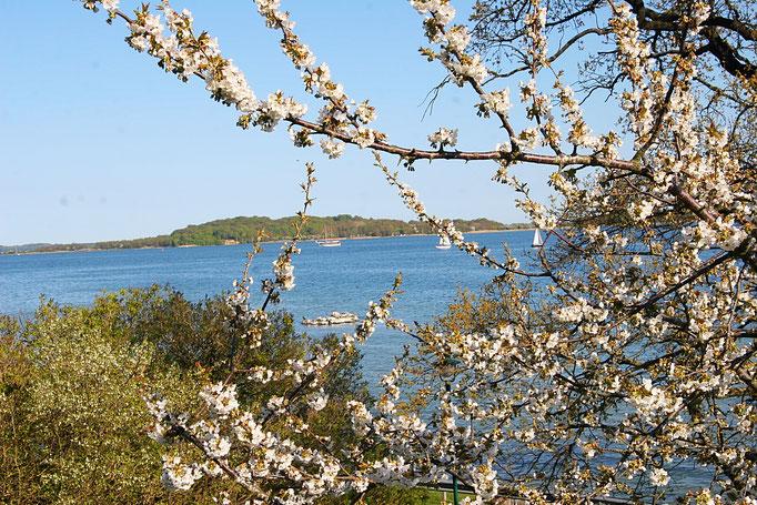 Ausblick auf die Insel Vilm