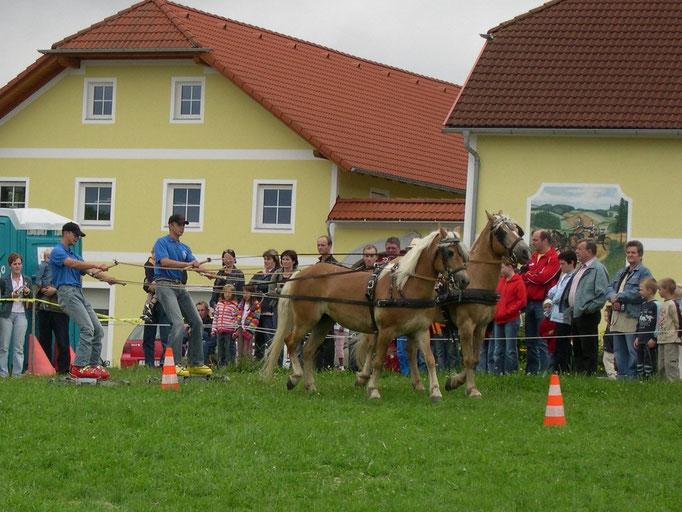 Pferdefest Königswiesen