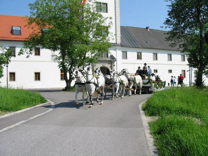 Glockenweihe Waldhausen