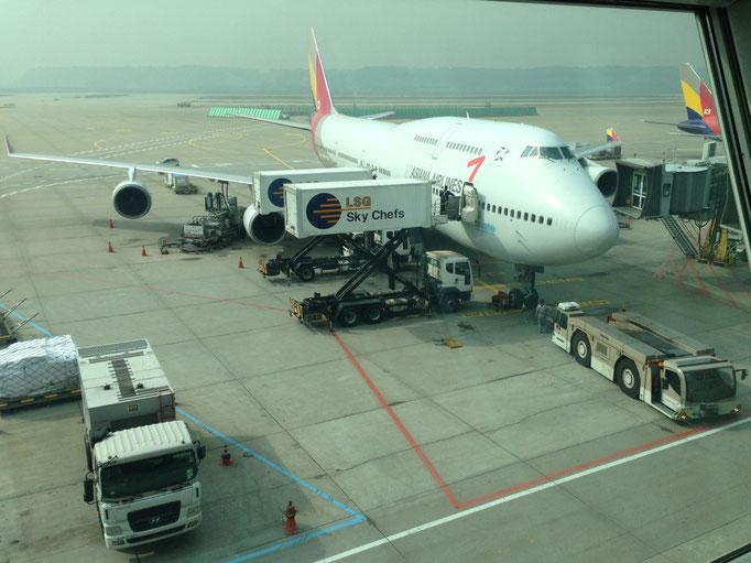Unser Rückflugzeug