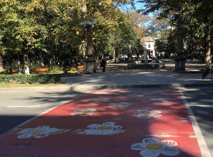 Fussgängerübergang mit Blümchen in Kutaisi