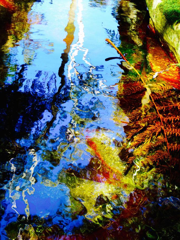 Wasserspiegelung, Carnarvon Gorge
