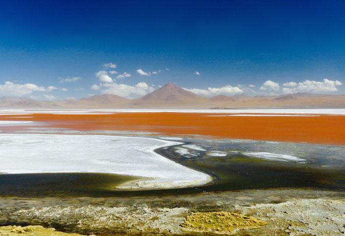 Laguna Colorado 1 Uyuni