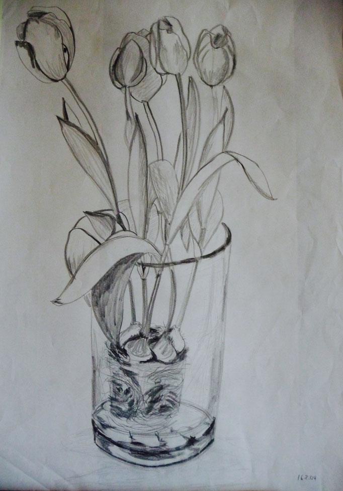 """Bleistiftzeichnung  42x59  """"Tulpen"""" 2004"""