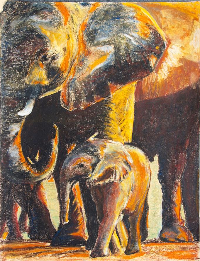 """Pastellkreide 65x50 """" Etoscha Elephant"""" 2010"""