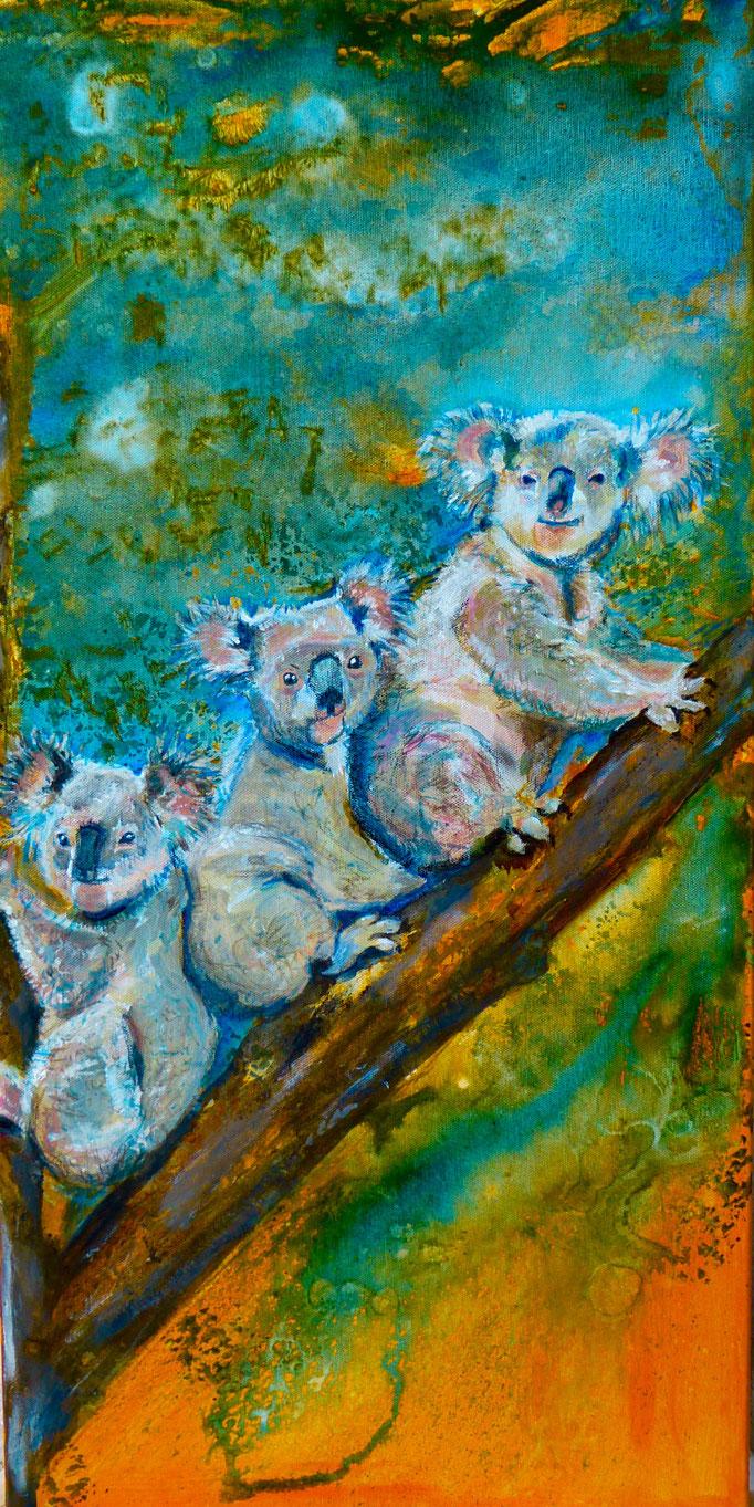 """Acryl und Ink auf Leinwand 80x40 """"Koala's 1"""" 2014, Australienserie, Privatsammlung"""