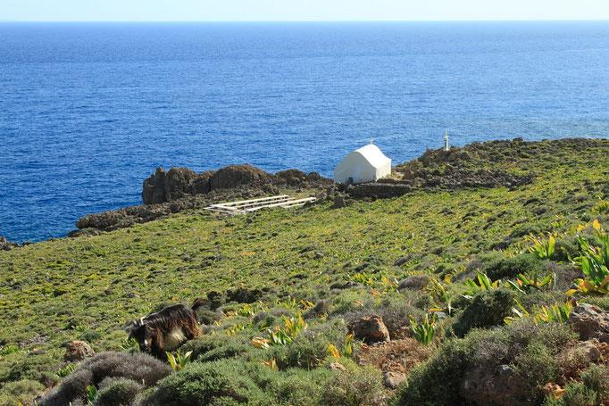 Sur le sentier cotier de Loutro à Chora sfakion