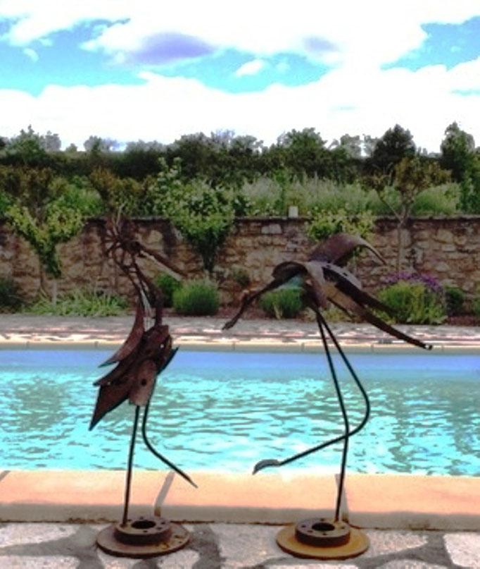 Oiseaux indisponibles