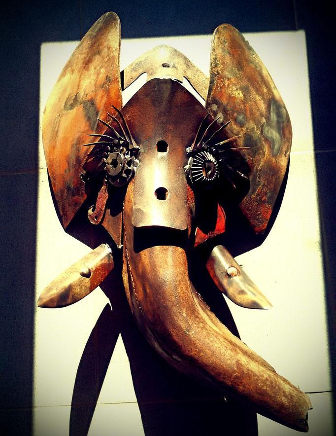 Tête  éléphant disponible