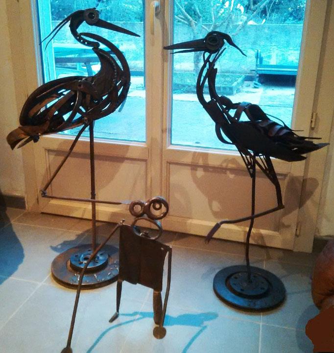 Oiseaux indisponible