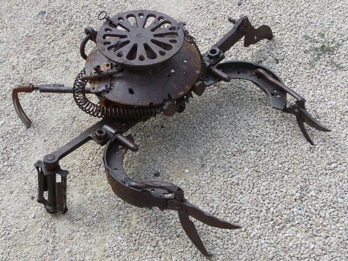 Crabe 50cmx50 cm     indisponible