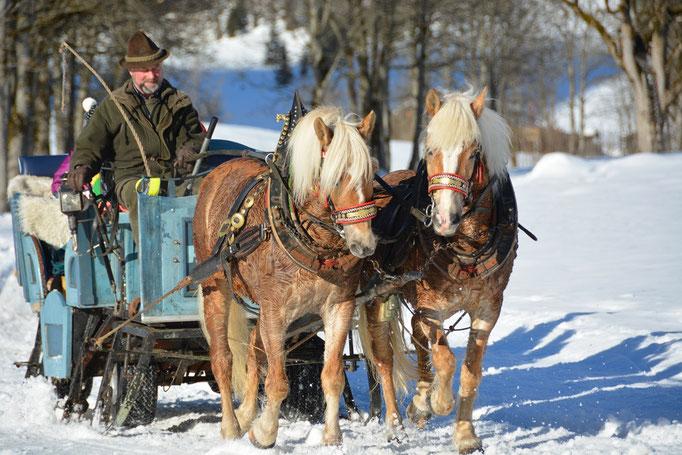 Mit einer flauschigen Decke auf einem Pferdegespann durch die verträumte Winterlandschaft gleiten, das ist Romantik pur