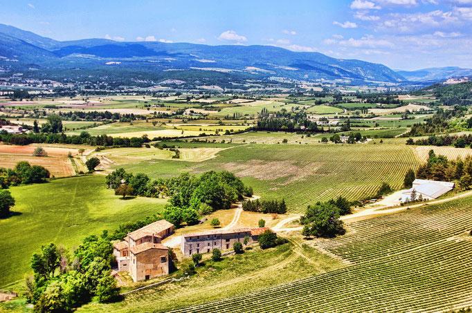 Mediterrane Landschaft mit Häusern und Weinfäldern